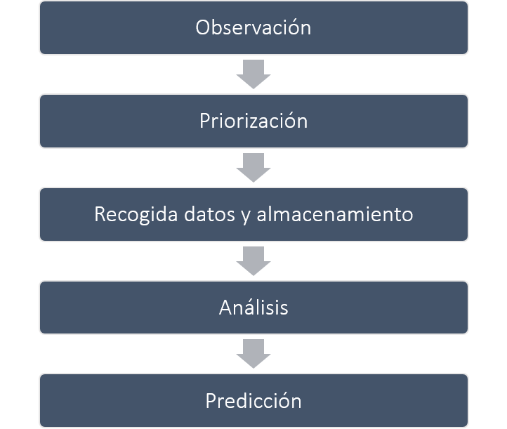 Proceso Transformación Digital